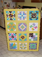 Andrew\\\&#39s bug quilt